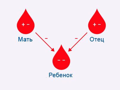 Rh-joonis_rus